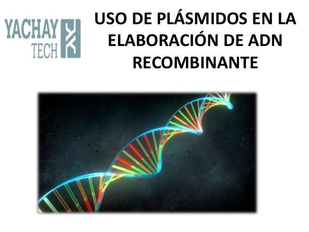 USO DE PLÁSMIDOS EN LA ELABORACIÓN DE ADN RECOMBINANTE