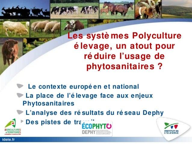 Les systè mes Polyculture é levage, un atout pour ré duire l'usage de phytosanitaires ? Le contexte europé en et national ...
