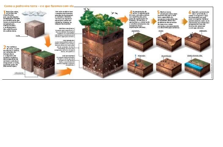 Como a pedra vira terra – e o que fazemos com ela1   Base dos solos,    as rochas sãoclassificadas                        ...