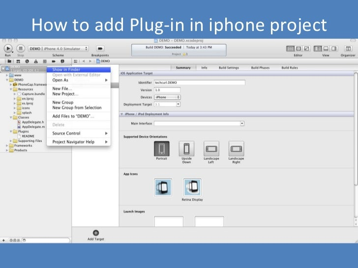 How to add Plug-in in iphone project