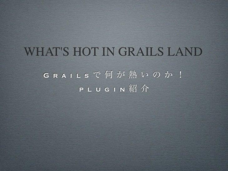 WHATS HOT IN GRAILS LAND  G r a i l s          p l u g i n