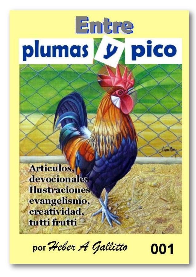 PLUMAS Y PICO 001