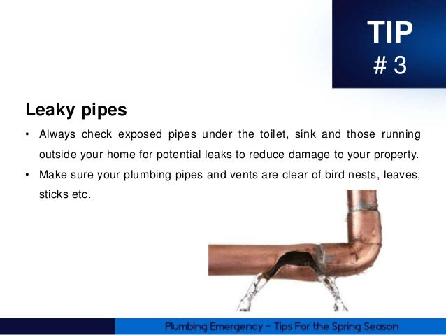 Plumbing Tips For The Spring From The Trusted Plumber In
