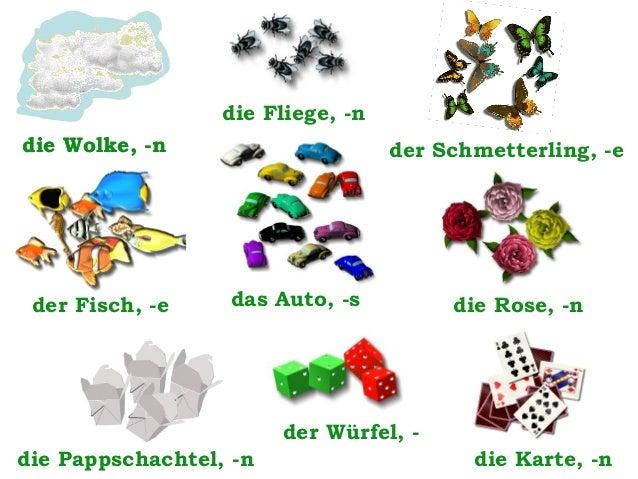 die Fliege, -n die Wolke, -n  der Fisch, -e  der Schmetterling, -e  das Auto, -s  die Rose, -n  der Würfel, die Pappschach...