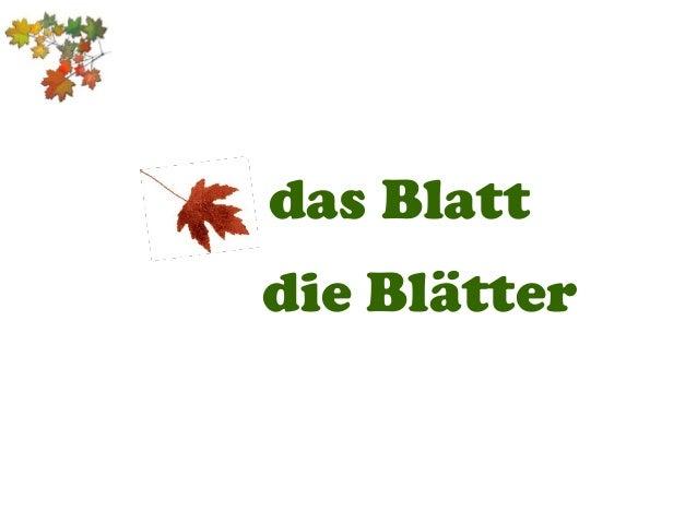das Blatt die Blätter