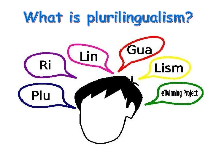What is plurilingualism?