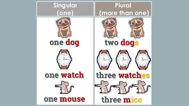 Plural Nouns: English Language Slide 2