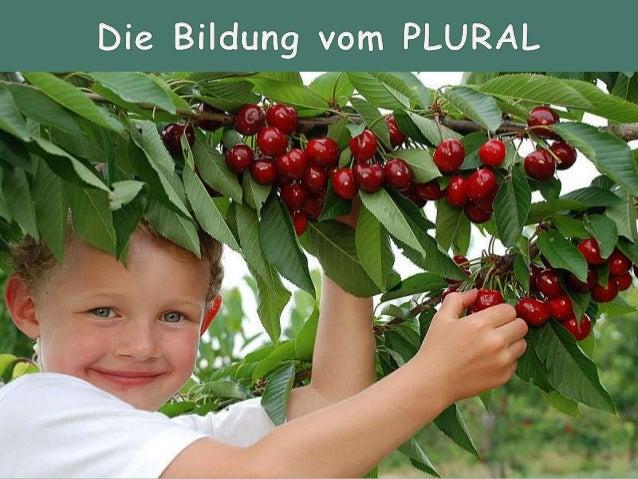 Formen der Pluralbildung