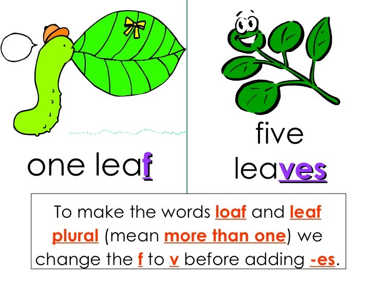 singular and plural nouns worksheets
