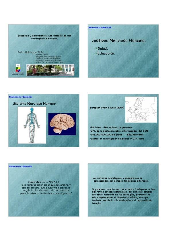 Pedro Maldonado, Ph.D. Educación y Neurociencia: Los desafíos de una convergencia necesaria. Profesor Titular *Programa de...