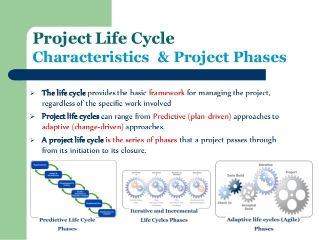 life cycle management phase essay Here is an essay on 'life-cycle-cost analysis of a project' for class 9, 10, 11 and 12 find paragraphs, long and short essays on 'life-cycle-cost analysis of a project' especially written for school and college students.