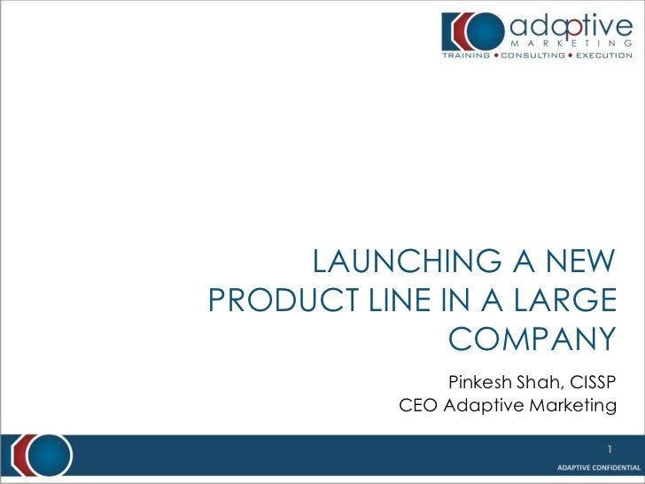 Launching a new product line in a large company<br />Pinkesh Shah, CISSP<br />CEO Adaptive Marketing<br />1<br />