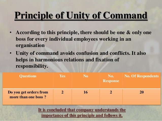 principles of management followed in mcdonalds Henry fayol's 14principels of management with respect  of management with respect to (mcdonald's)  about mcdonald's 14 principles of management.