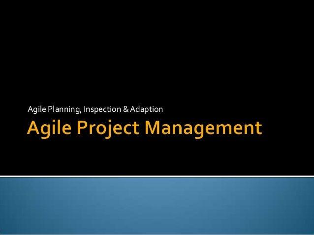 Agile Planning, Inspection & Adaption