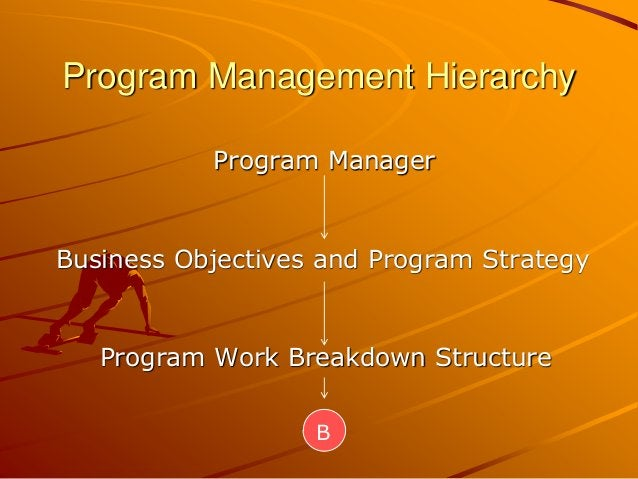 Program Management Hierarchy Program Manager Business Objectives and Program Strategy Program Work Breakdown Structure B