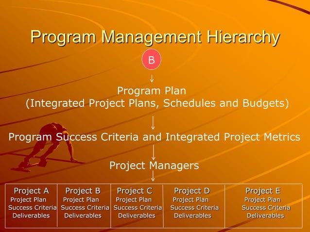 Program Management Hierarchy Project A Project B Project C Project D Project E Project Plan Project Plan Project Plan Proj...