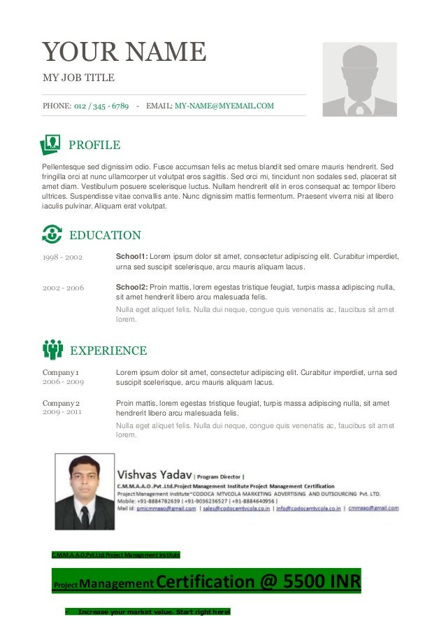 YOUR NAME MY JOB TITLE PHONE: 012 / 345 - 6789 - EMAIL: MY-NAME@MYEMAIL.COM PROFILE Pellentesque sed dignissim odio. Fusce...