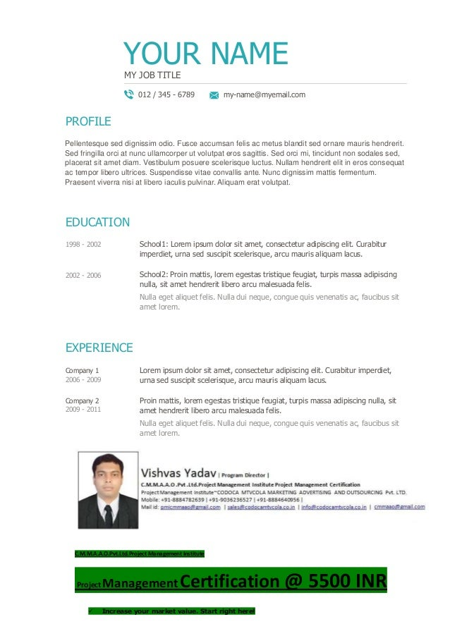 pmp title resume