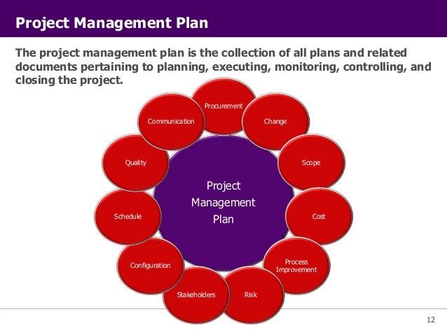 PMI Project Management Principles – Project Management Plan