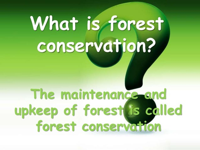 essay on conservation of forest trees