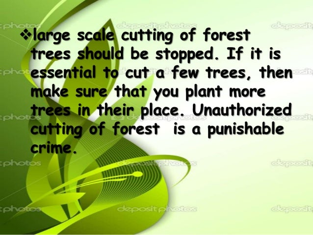 Forest protection