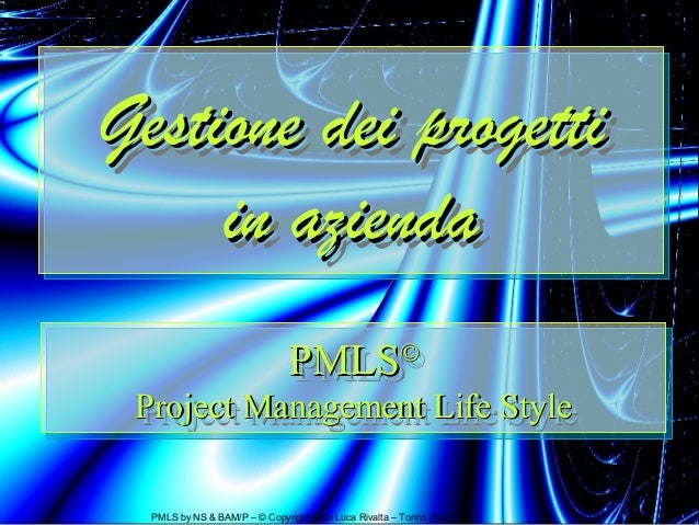 Project Based Enterprise: Pensare e agire per progetti (Italian Edition)