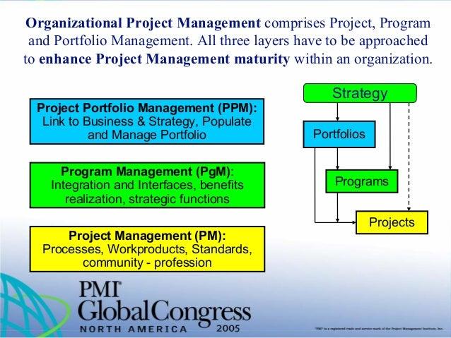Pmi project management