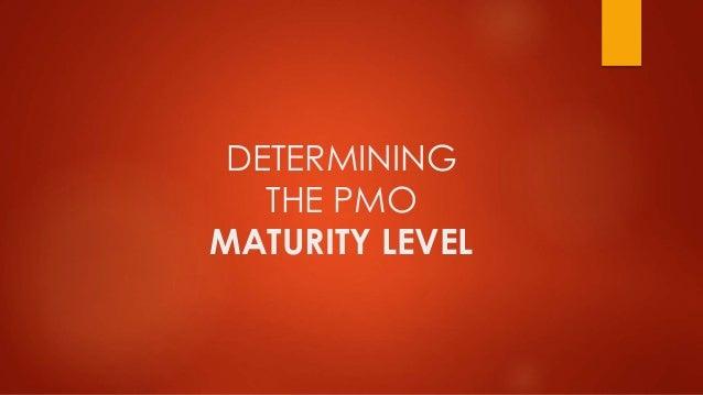 DETERMINING  THE PMO  MATURITY LEVEL