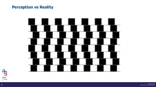 www.p3m.global ©p3m global. All rights reserved.16 Perception vs Reality