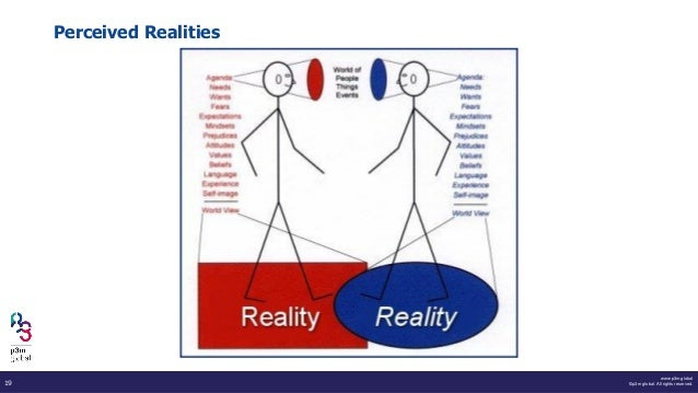 www.p3m.global ©p3m global. All rights reserved.19 Perceived Realities