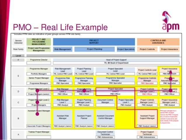 PMO – Real Life Example