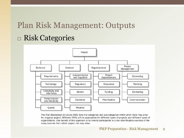 pmi project risk management pdf