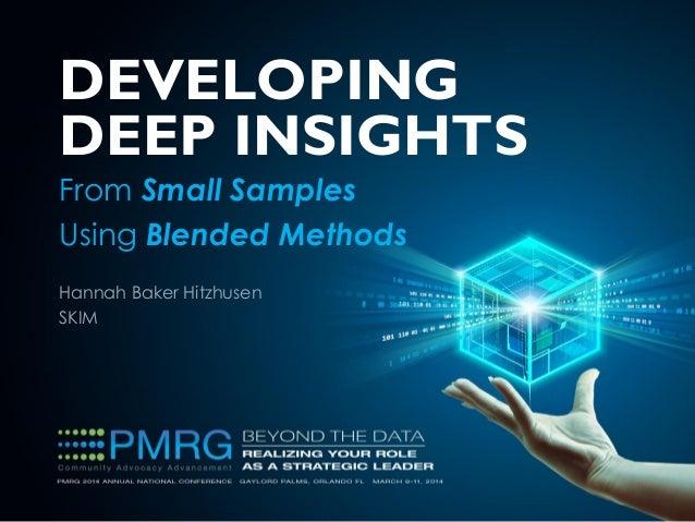 Hannah Baker Hitzhusen SKIM DEVELOPING DEEP INSIGHTS From Small Samples Using Blended Methods