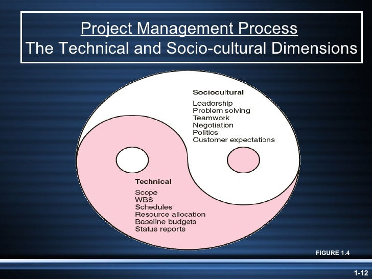 technical and socio cultural dimensions of project management The system and sociocultural dimensions of project management are two sides of t he same coin because successful project managers are skillful in both areas the.