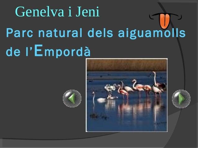 Genelva i Jeni Parc natural dels aiguamolls de l' E mpordà
