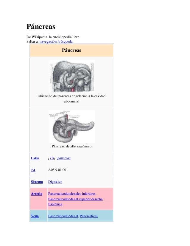PáncreasDe Wikipedia, la enciclopedia libreSaltar a: navegación, búsqueda                       Páncreas       Ubicación d...