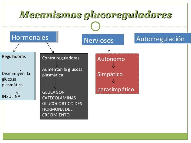Generalidades de la InsulinaGeneralidades de la Insulina Transporte libre Vida media 6 – 10 minutos Degradada en Hígado...
