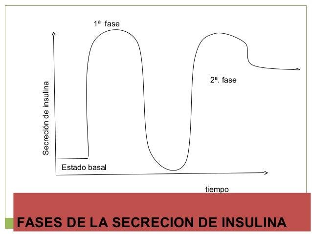 Factores que regulanFactores que regulan la secreción de insulinala secreción de insulina Glucosa plasmática Amino ácido...