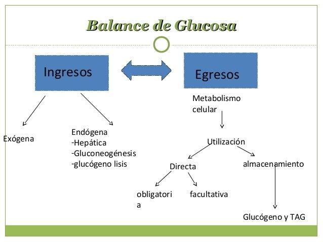 Períodos de la glucosaPeríodos de la glucosa POSTPRANDIALPOSTPRANDIAL - Abundancia de glucosa - Características Absorción ...