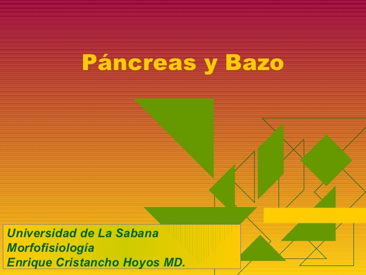 Páncreas y Bazo     Universidad de La Sabana Morfofisiología Enrique Cristancho Hoyos MD.