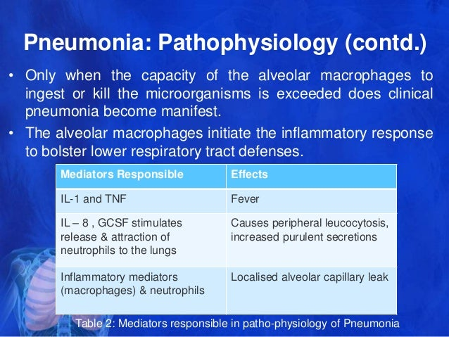 pneumonia and cough mechanism essay Free essays management and treatment and psychosocial aspects of pneumonia biology essay management and treatment and psychosocial aspects of pneumonia biology.
