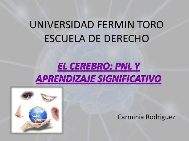 UNIVERSIDAD FERMIN TOROESCUELA DE DERECHO  Carminia Rodriguez