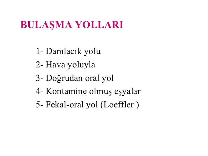 Fekal oral