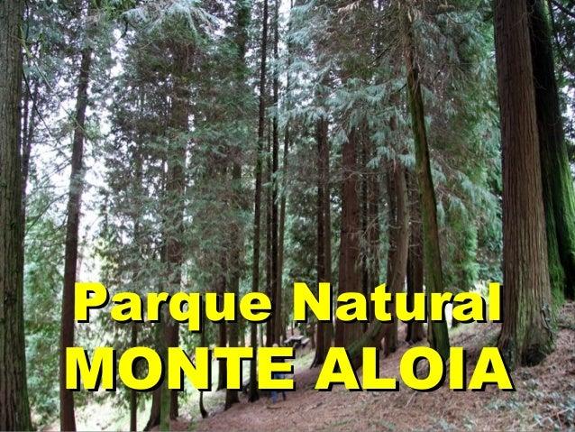 Parque NaturalParque Natural MONTE ALOIAMONTE ALOIA