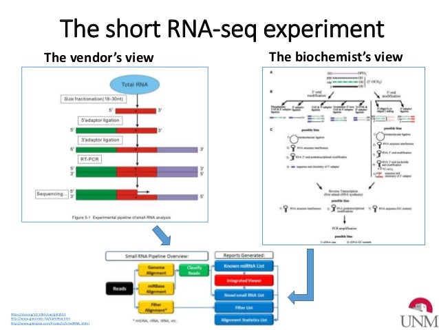 correcting bias and variation in small rna sequencing for optimal microrna biomarker discovery and validation in cardio metabolic and renal disease