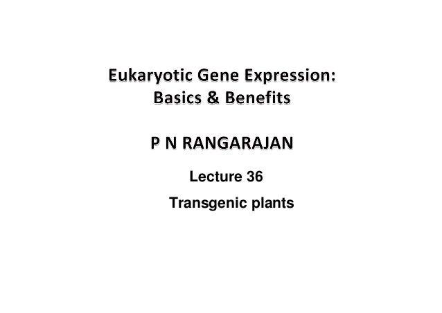 Lecture 36 Transgenic plants