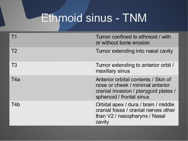 malignant tumors involving paranasal sinuses, Human Body