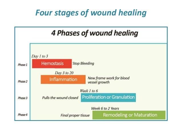 Pathophysiology inflammation and repair