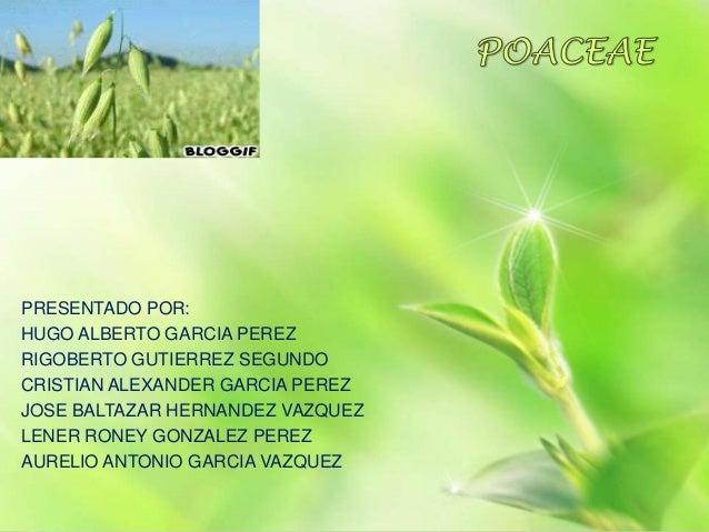 PRESENTADO POR:HUGO ALBERTO GARCIA PEREZRIGOBERTO GUTIERREZ SEGUNDOCRISTIAN ALEXANDER GARCIA PEREZJOSE BALTAZAR HERNANDEZ ...