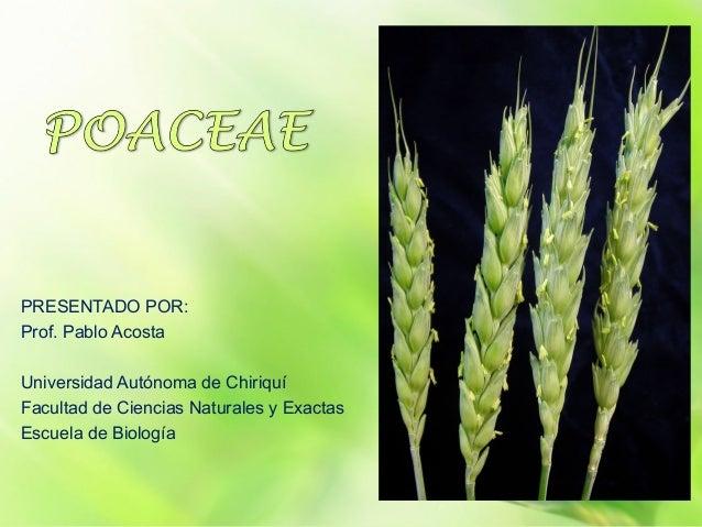 PRESENTADO POR:Prof. Pablo AcostaUniversidad Autónoma de ChiriquíFacultad de Ciencias Naturales y ExactasEscuela de Biología